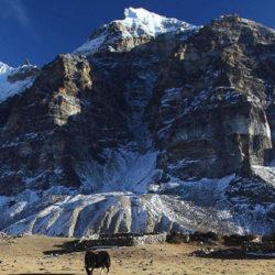 Camp de base du Kanchenjunga