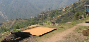 La vallée de Helambu